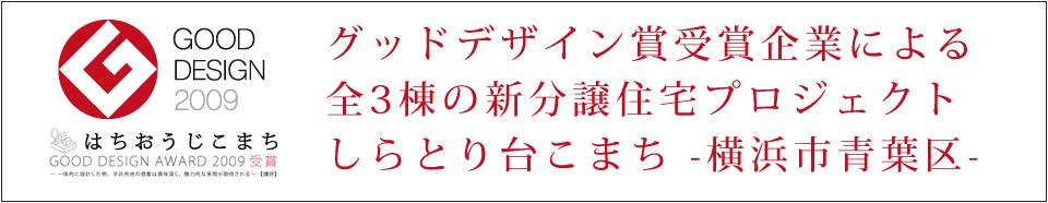 グッドデザイン賞受賞企業による全3棟の新分譲住宅プロジェクトしらとり台こまち-横浜市青葉区-